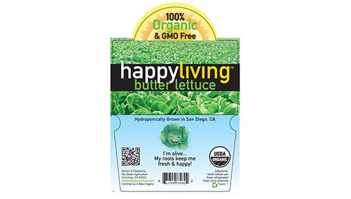 HAPPY-510X290